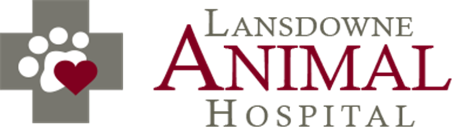 Lansdowne Animal Hospital