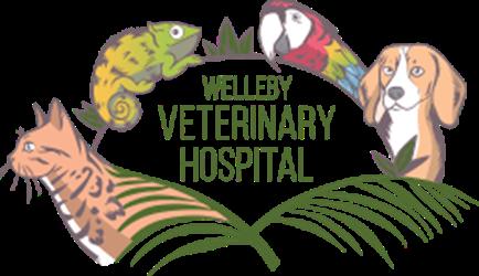 Welleby Veterinary Hospital