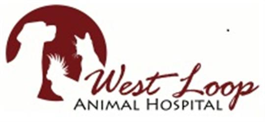 West Loop Animal Hospital