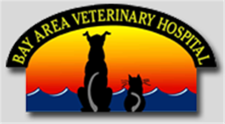 Bay Area Veterinary Hospital