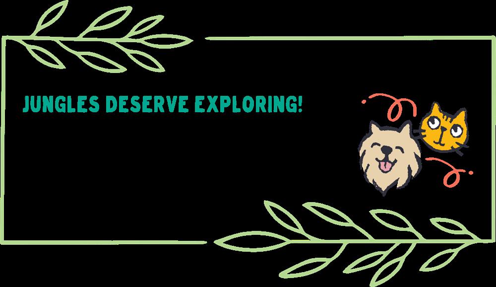 Jungles deserve exploring! graphic.