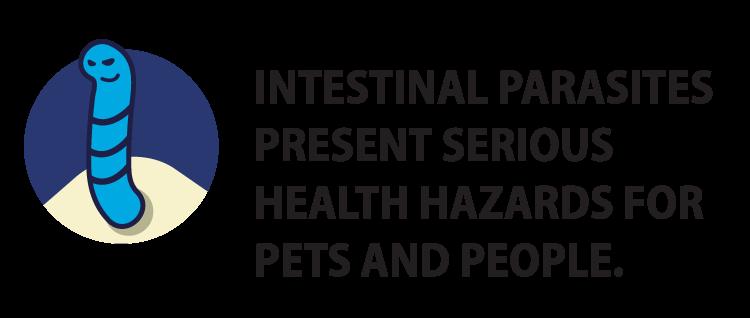 intestinal parasite with text image